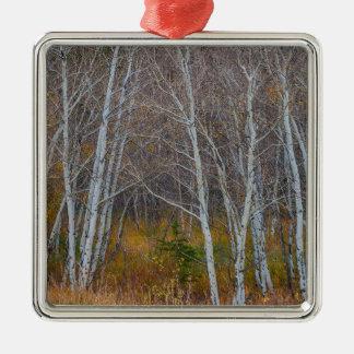 Promenade dans les bois ornement carré argenté