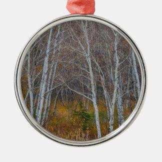 Promenade dans les bois ornement rond argenté