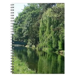 Promenade ensoleillée verte de rivière d'arbres de carnet