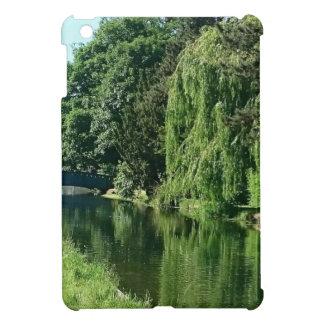 Promenade ensoleillée verte de rivière d'arbres de coques pour iPad mini
