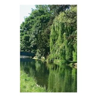 Promenade ensoleillée verte de rivière d'arbres de papeterie