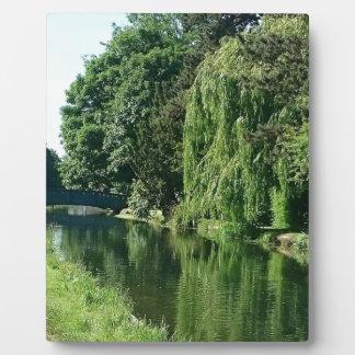 Promenade ensoleillée verte de rivière d'arbres de photo sur plaque