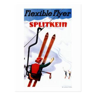 Promo en bois de skis de Splitkein d'insecte Carte Postale