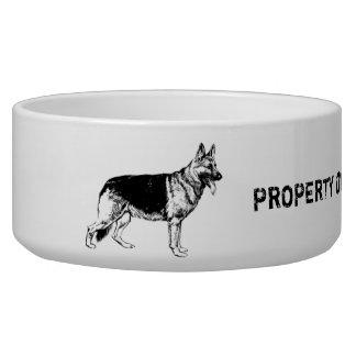 Propriété de ma cuvette de chien de berger écuelle pour chien