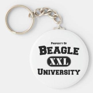 Propriété d'université de beagle porte-clés