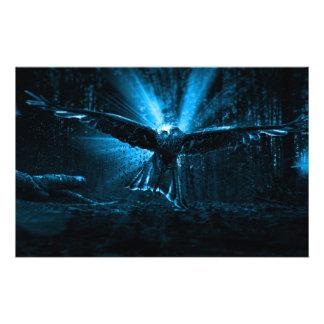 Prospectus 14 Cm X 21,6 Cm Nuit Eagle