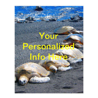 Prospectus 21,6 Cm X 24,94 Cm Cinq tortues paresseuses se situant dans le sable