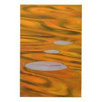 Protection de lis sur l'eau orange, Canada Impression Sur Bois