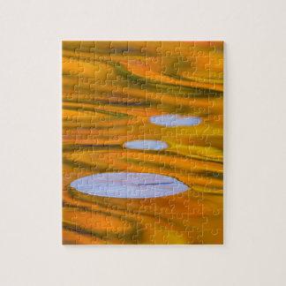 Protection de lis sur l'eau orange, Canada Puzzle