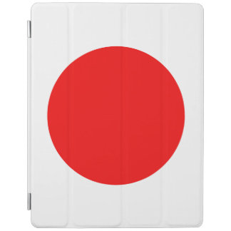 PROTECTION iPad