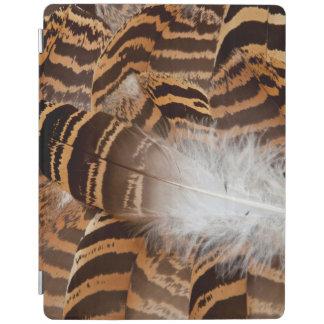 Protection iPad Abrégé sur plume de Brown Stripepd