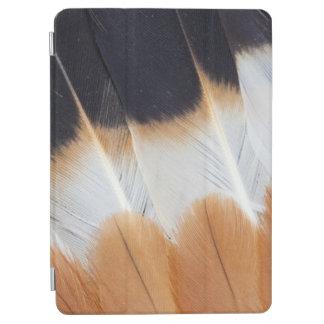 Protection iPad Air Abrégé sur du nord plume de vanneau