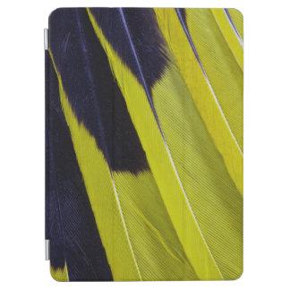 Protection iPad Air Abrégé sur jaune et noir plume