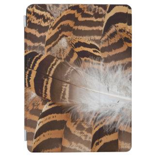 Protection iPad Air Abrégé sur plume de Brown Stripepd