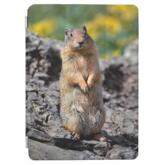 Protection iPad Air Alerte d'écureuil moulu pour le danger