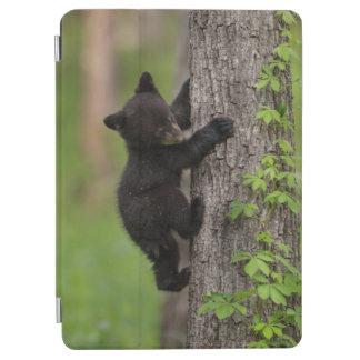 Protection iPad Air Arbre d'escalade de CUB d'ours noir