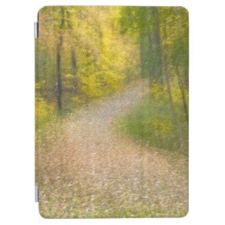 Protection iPad Air Arbres dans des couleurs d'automne et la voie