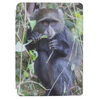 Protection iPad Air Consommation bleue de singe