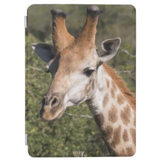 Protection iPad Air Détail principal de girafe
