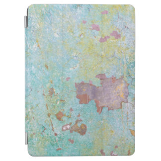 Protection iPad Air Détails de fort peint Hayden, WA du mur |