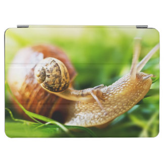 Protection iPad Air Escargots