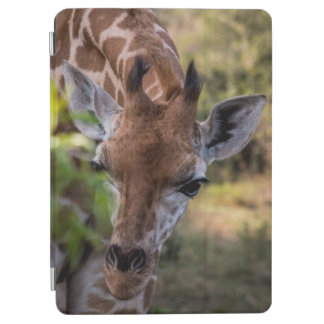 Protection iPad Air Headshot d'une girafe