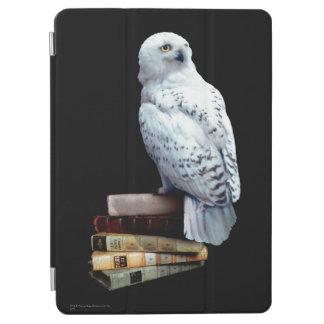 Protection iPad Air Hedwig sur des livres
