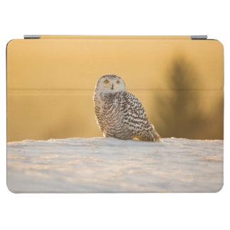 Protection iPad Air Hibou de Milou