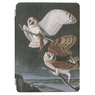Protection iPad Air Hiboux de grange, les oiseaux de l'Amérique John