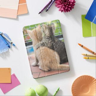 Protection iPad Air Images de Getty | deux chatons sur un balcon
