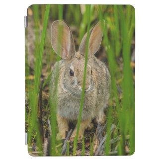 Protection iPad Air Lapin de lapin de désert