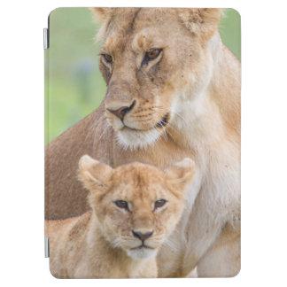 Protection iPad Air Lionne et lion CUB