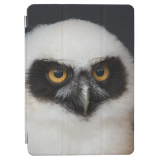 Protection iPad Air Owl_20180210_by_JAMFoto