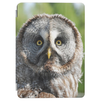 Protection iPad Air Owl_20180219_by_JAMFoto