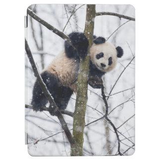 Protection iPad Air Panda de bébé dans l'arbre