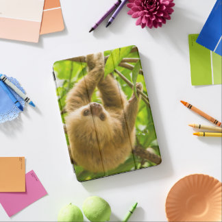 Protection iPad Air Paresse à l'envers des images | de Getty