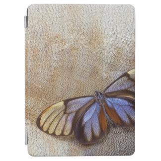 Protection iPad Air plume égyptienne d'oie de papillon de Verre-aile