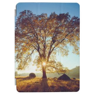 Protection iPad Air Réserve forestière noire des chênes | Cleveland,