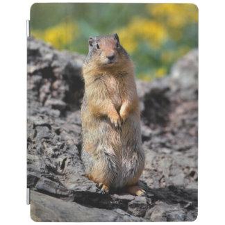 Protection iPad Alerte d'écureuil moulu pour le danger
