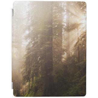 Protection iPad Arbres de séquoia en brouillard de matin avec des