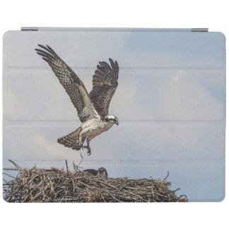 Protection iPad Balbuzard dans un nid