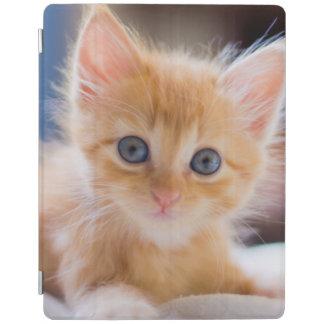 Protection iPad Chat mignon avec des yeux bleus