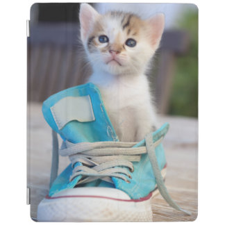 Protection iPad Chaton dans une chaussure