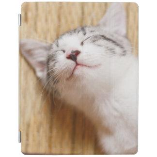 Protection iPad Chaton de sommeil