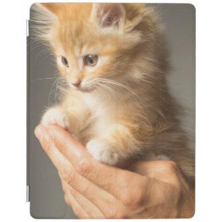 Protection iPad Chaton doux dans la bonne main
