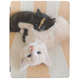 Protection iPad Chatons blancs et noirs