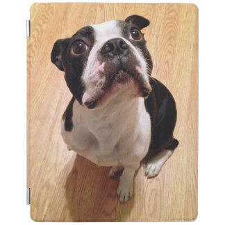 Protection iPad Chien de Boston Terrier