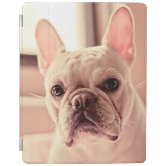 Protection iPad Chiot de bouledogue français