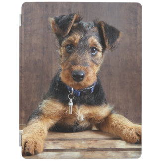 Protection iPad Chiot de terrier d'Airedale