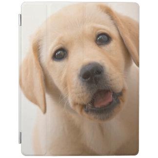Protection iPad Chiot d'or de Labrador